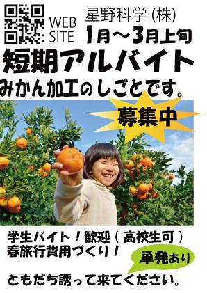 滋賀県長浜工場学生短期アルバイト募集用バナーみかん加工